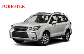 FORESTER 2019 -